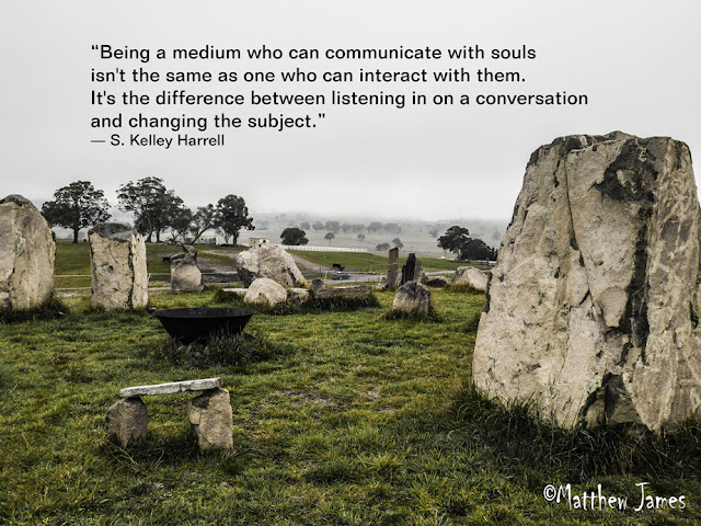 """Being a medium who can communicate with souls isn't the same as one who can interact with them. It's the difference between listening in on a conversation and changing the subject."" - S.Kelley Harrell"