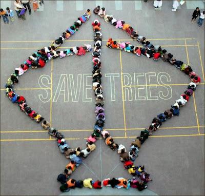 Happydiwalipictures-happy kite festival, kite festival images, kite festival facebook cover photo, kite festival essay in hindi-