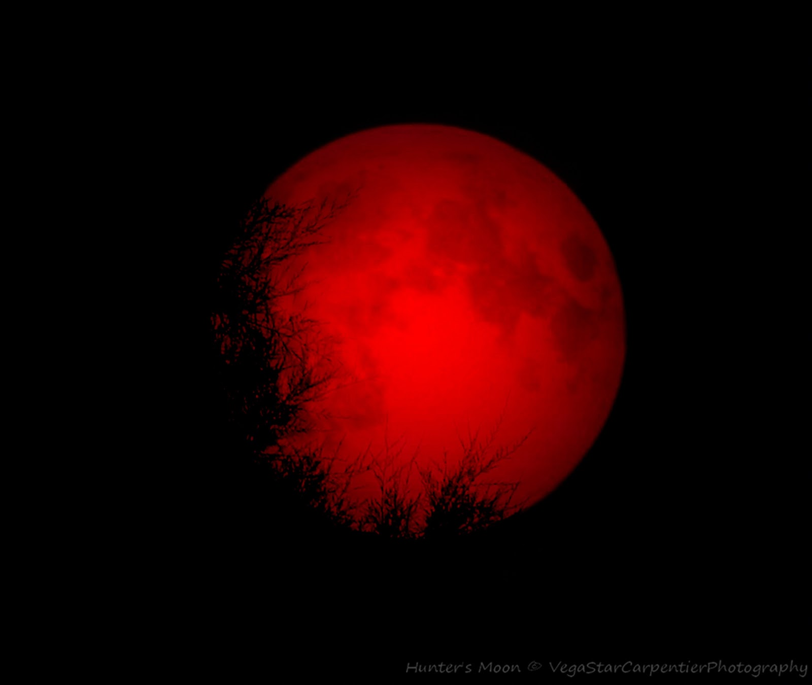 blood red moons - photo #6