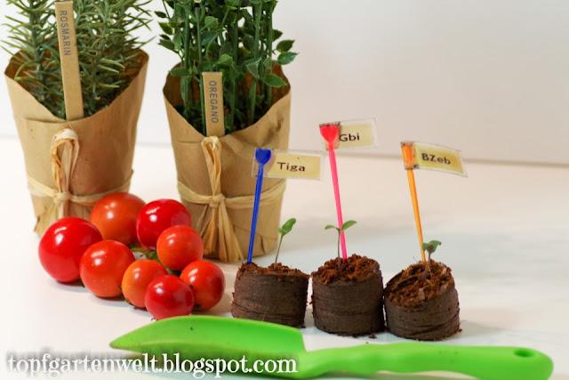 Sortenwahl Tomaten 2019 - Gartenblog Topfgartenwelt