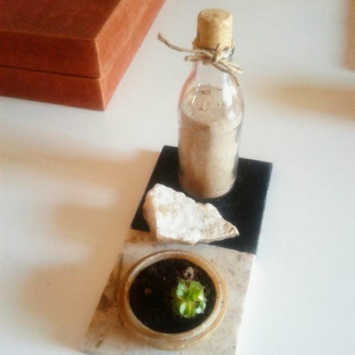 Centrepiece diy home sand succulent