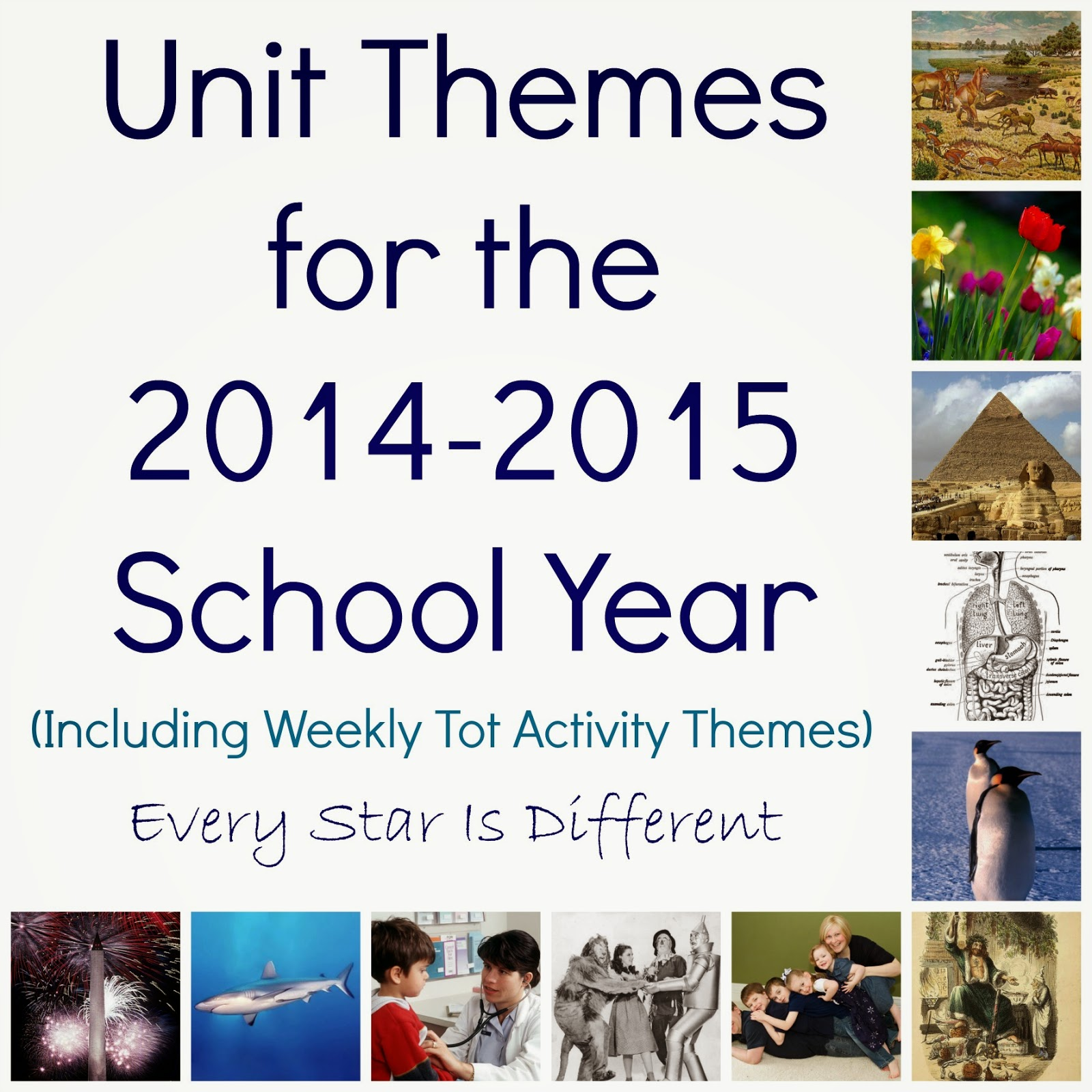 Unit Themes for the 2014-2015 School Year