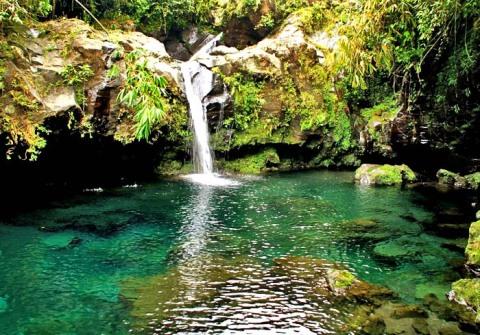 Klik untuk info Telaga Sunyi Wisata Alam Baturaden
