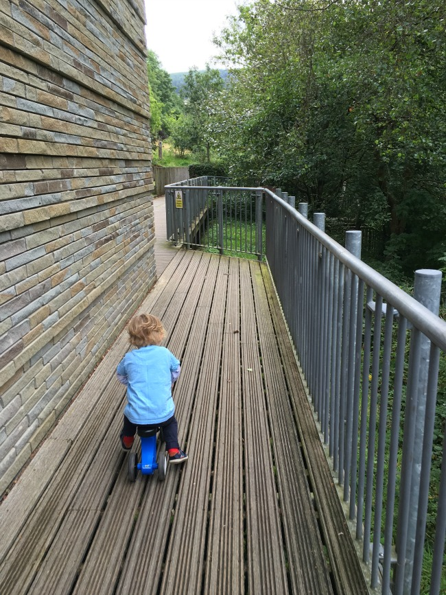toddler-on-bike-on-wooden-decking