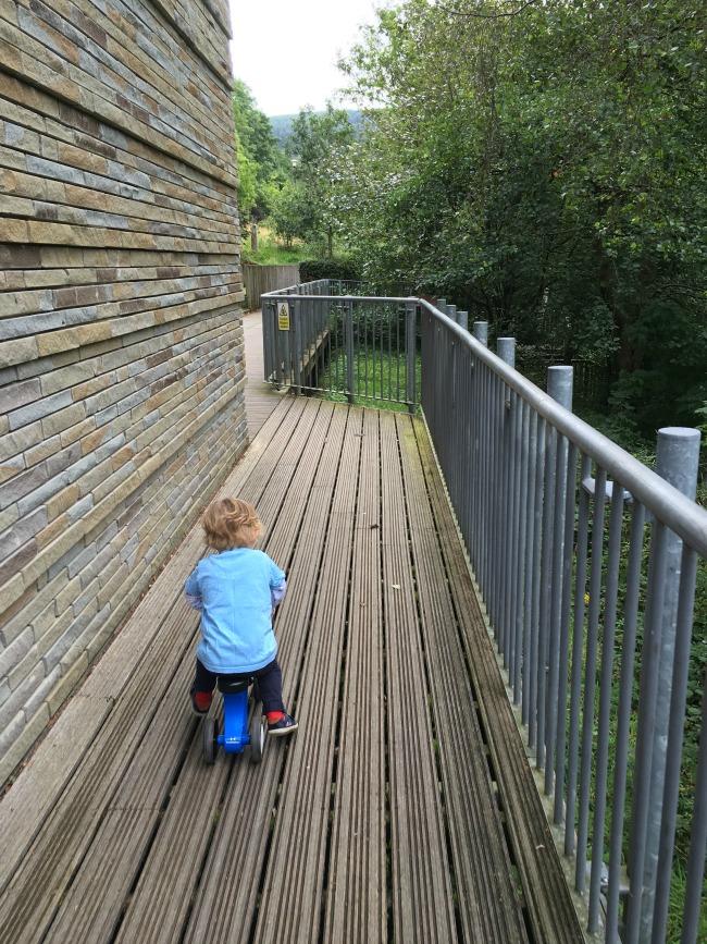 toddler-on-bike-on-wooden-decking