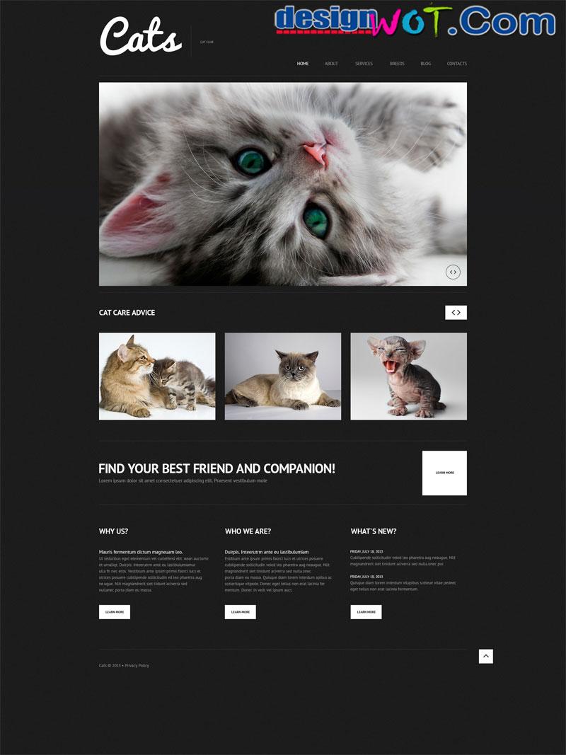 Cats Responsive WordPress Theme