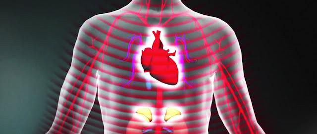 dwutlenek siarki i wpływ na zdrowie