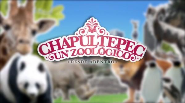 7 animales del zoológico de Chapultepec