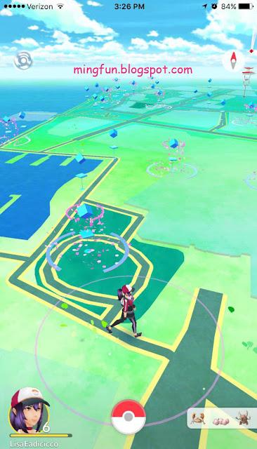 Pokemon Go Leaves