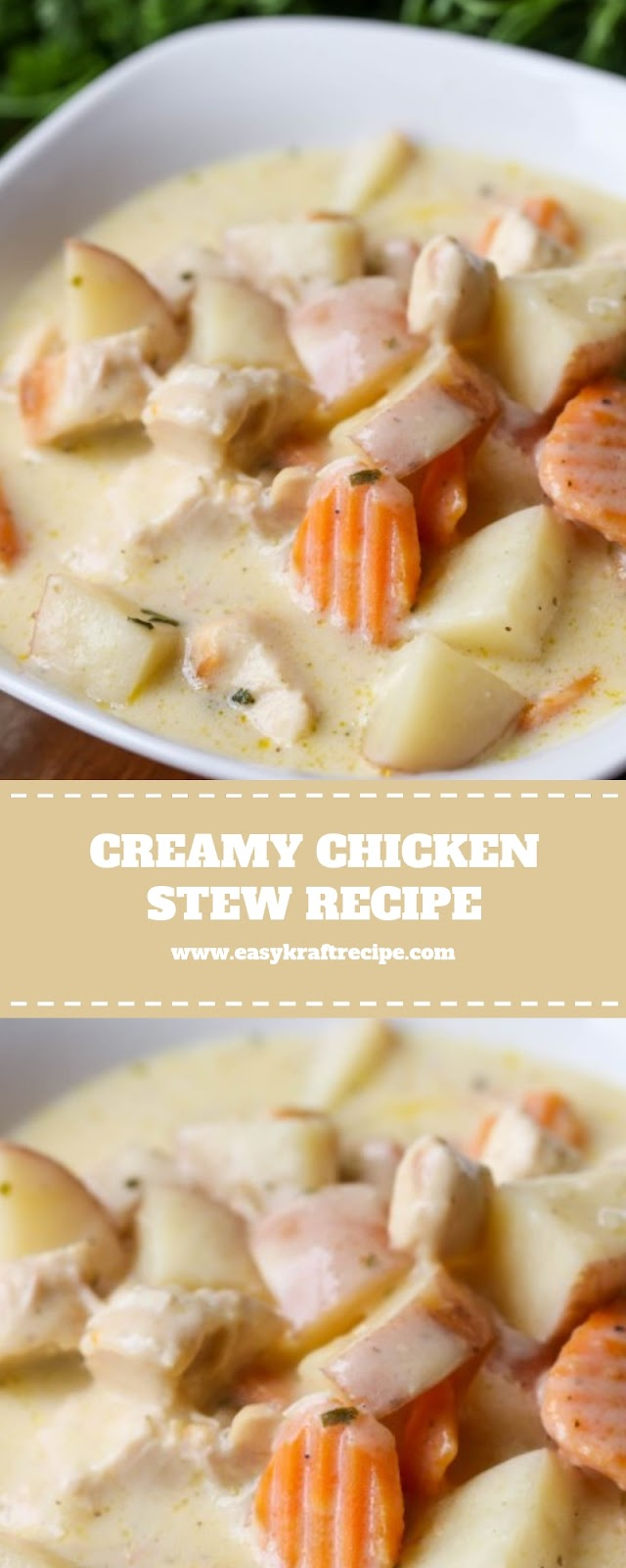 CREAMY CHICKEN STEW RECIPE