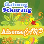 AdsenseCamo