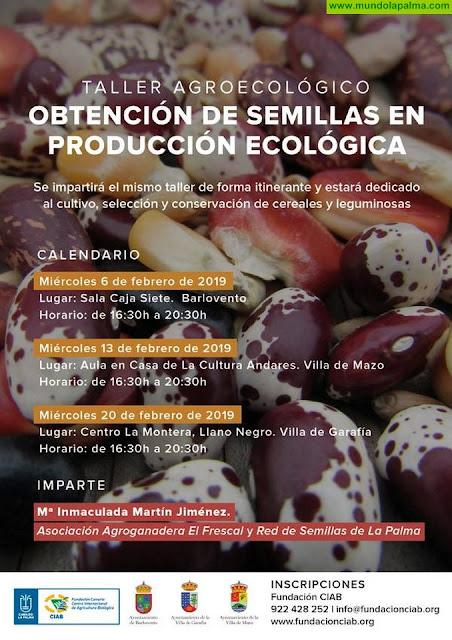 """Taller Agroecológico """"Obtención de Semillas en Producción Ecológica"""" en Garafía"""