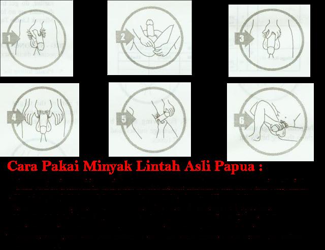 Cara Pakai Minyak Lintah Asli Papua :