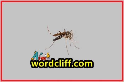 Report Text Bahasa Inggris Tentang Nyamuk Dan Artinya