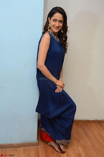 Pragya Jaiswal in beautiful Blue Gown Spicy Latest Pics February 2017 011.JPG