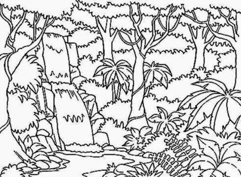 - Free Coloring Pictures: Rainforest Coloring Pictures