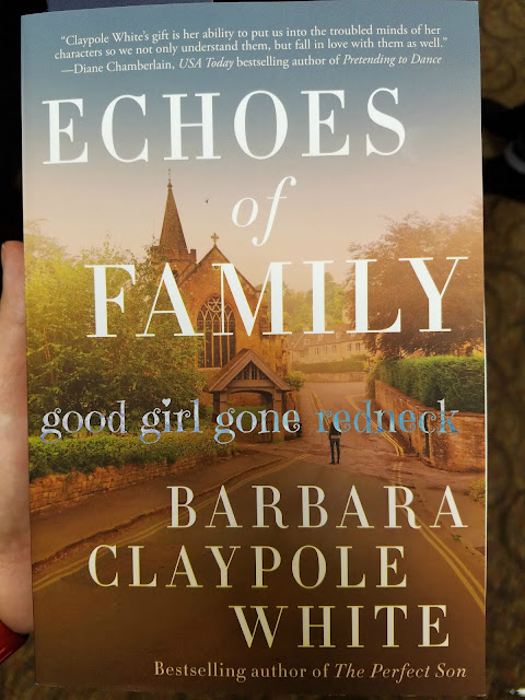 book review, reading, amreading, fiction, Barbara Claypole White, BCW, NC fiction, review,