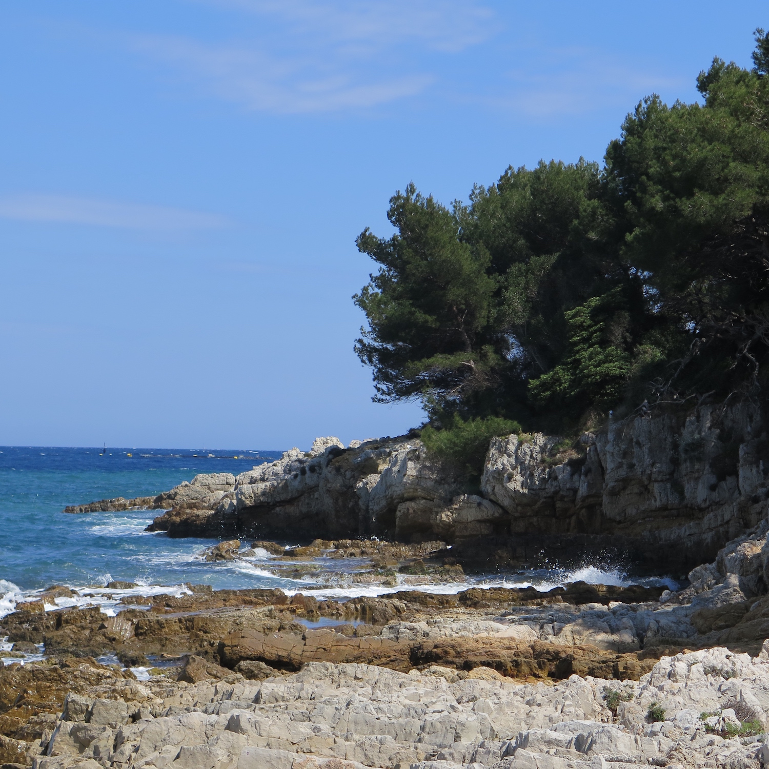MaiTai\'s Picture Book: Cannes - part two