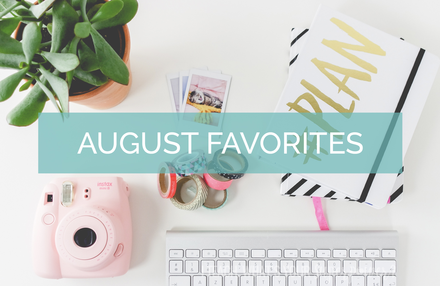 August Favorites-a book you need to read, my life summed up in a t-shirt, and a tough month.