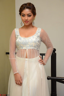 Anu Emmanuel in a Transparent White Choli Cream Ghagra Stunning Pics 105.JPG