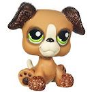 Littlest Pet Shop Pet Pairs Boxer (#2351) Pet