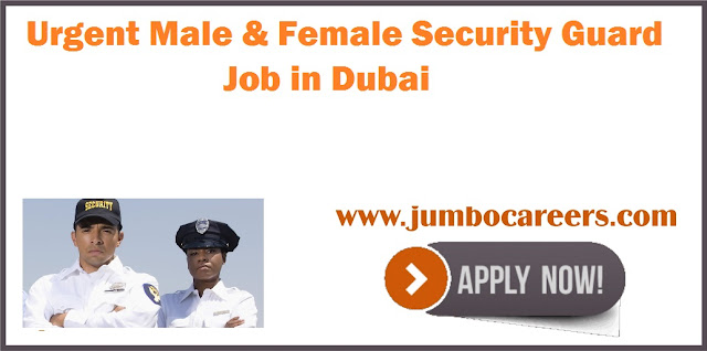 Male & Female Security Guard Job in Dubai
