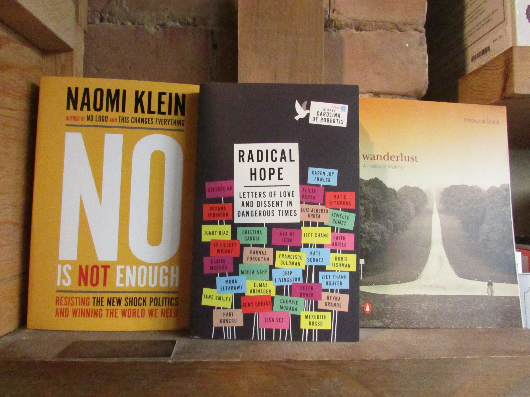 co opting dissent by naomi klein