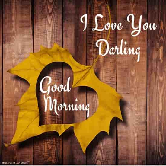 i love you good morning darling