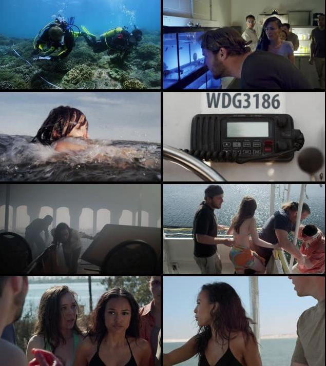 3 Headed Shark Attack 2015 UNCUT Dual Audio Hindi 720p BRRip