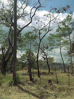 Costa Rica roadside landscape
