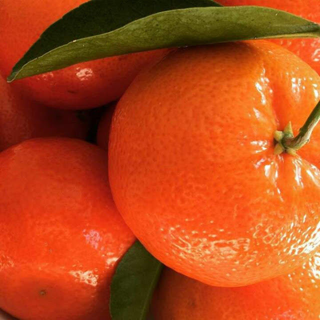 Top 11 Health Benefits of Orange