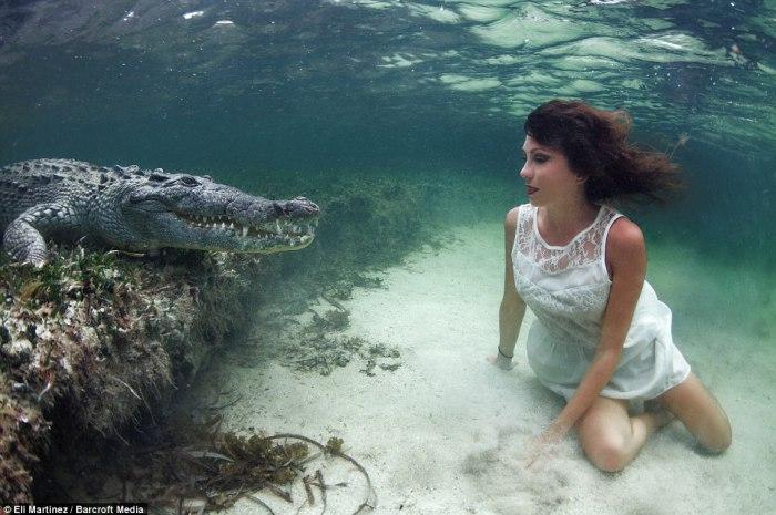 Aksi Nekat Wanita Cantik Selfie Bareng Buaya di Bawah Laut