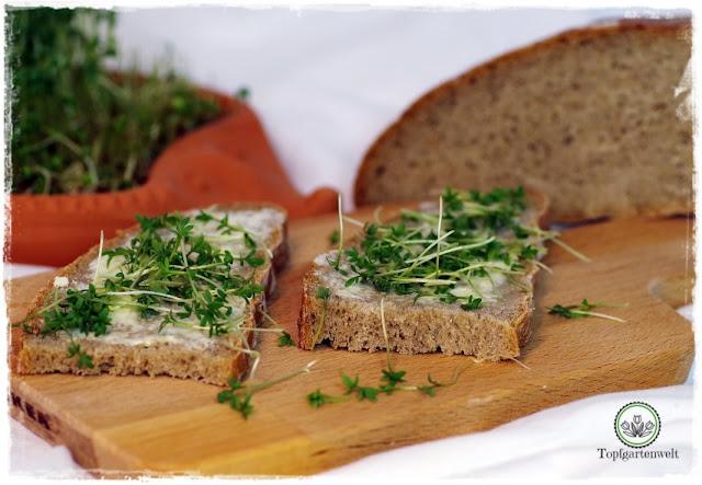 Gartenblog Topfgartenwelt Brot aus dem Dampfbackofen: österreichiches Hausbrot Rezept
