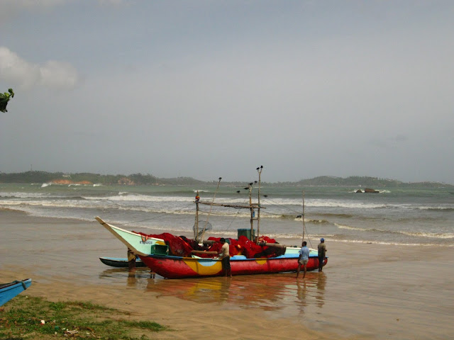 Travel Photos With No Filter and edits Indian Ocean Sri-Lanka