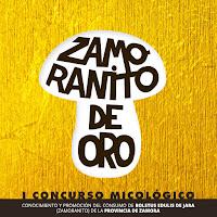 Zamoranito de Oro 2017