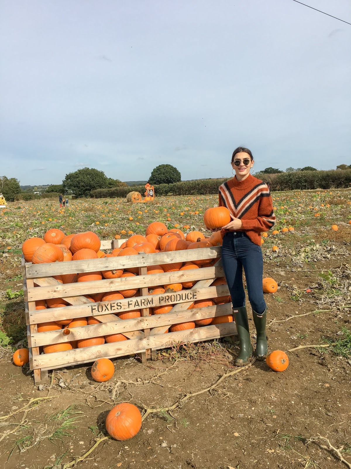 pumpkin patch london foxes farm produce