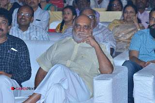 Om Namo Venkatesaya Telugu Movie Audio Launch Event Stills  0343.JPG