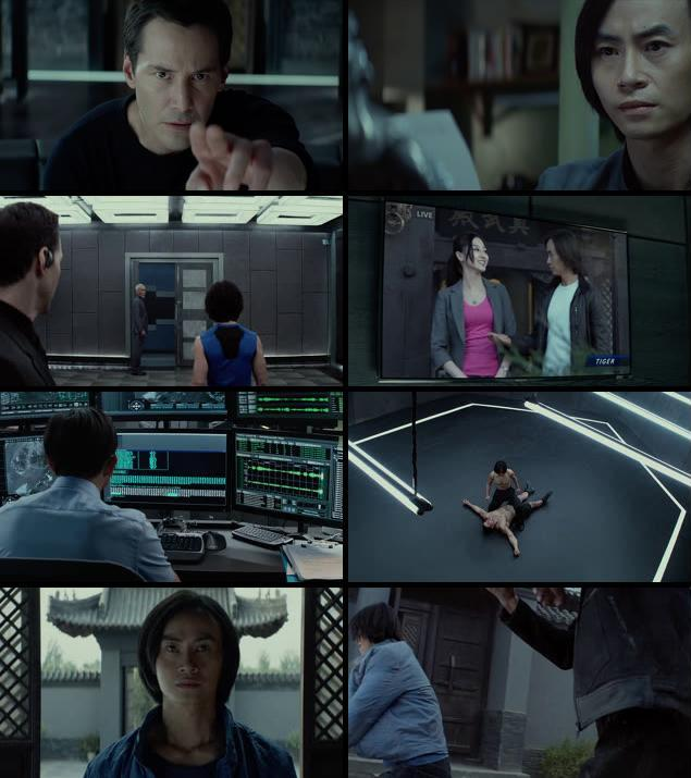 Man Of Tai Chi 2013 Dual Audio Hindi 720p BluRay