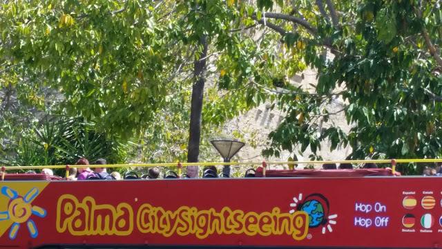 Sightseeing in Palma de Mallora