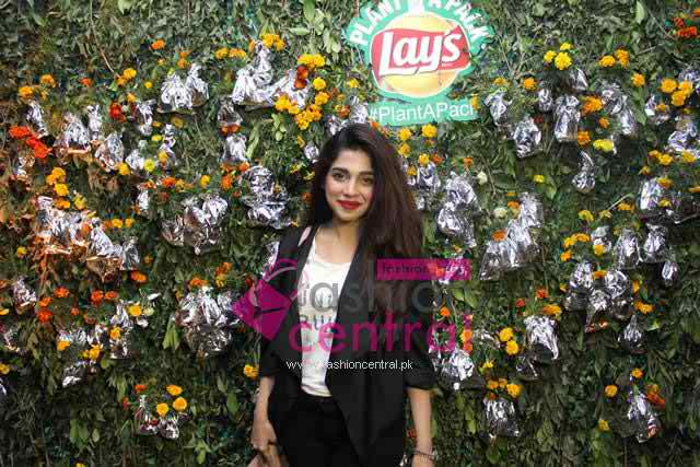 Lays Plant Pack Activity In Karachi