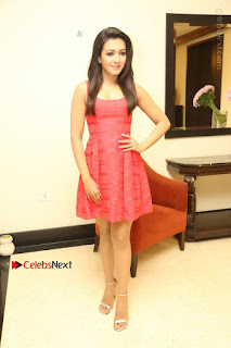Actress Catherine Tresa Latest Pos in Red Short Dress at Intex Air Conditioners Launch  0031.jpg