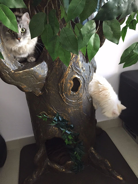 Designer Cat Tree