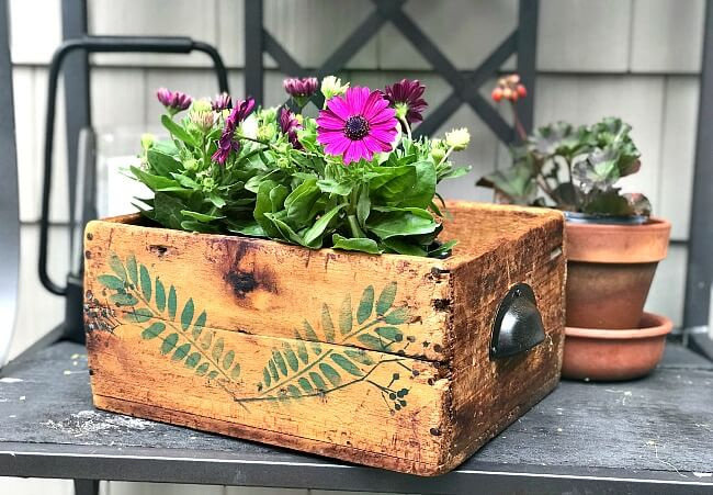 Antique Stenciled Rustic Crate with flowers