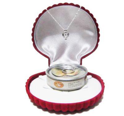 bayan sevgiliye özel inci kolye hediyesi