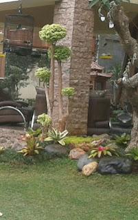 Tukang Taman di Juanda - Jasa Pembuatan Taman