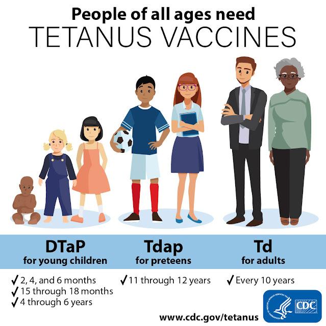 tahapan vaksin tetanus