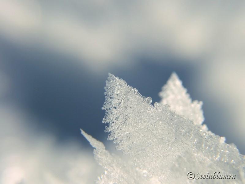 Schneekristalle Makroaufnahme