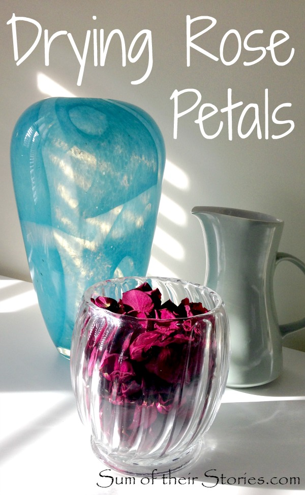 how to make dry rose petals at home
