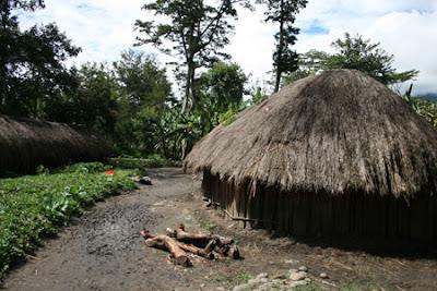 Bangunan Rumah Adat Papua
