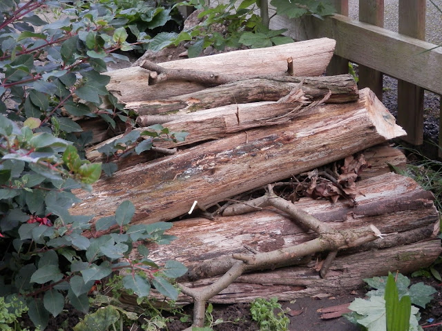 Making a Log Pile for your Garden. secondhandsusie.blogspot.co.uk